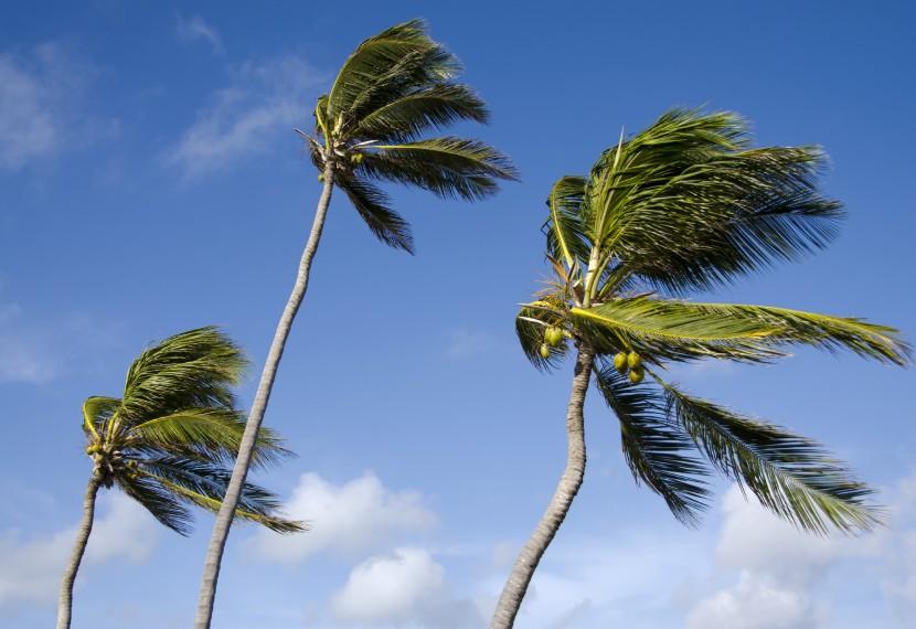 Jak przeliczać wiatr między węzłami, km/h, a skalą Beauforta? Jakie mamy skale siły wiatru?